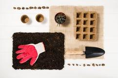 Vue supérieure d'outils de jardinage sur le fond en bois blanc de planches Images libres de droits