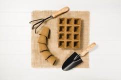 Vue supérieure d'outils de jardinage sur le fond en bois blanc de planches Photo stock