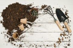 Vue supérieure d'outils de jardinage sur le fond en bois blanc de planches Photos stock