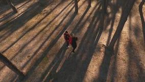 Vue supérieure d'un couple embrassant dans une forêt de pin dans la lumière de coucher du soleil Les couples interraciaux dans l' banque de vidéos