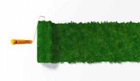 Vue supérieure d'un rouleau de peinture herbeux Photo libre de droits
