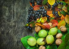 Vue supérieure de baies d'assortiment de noix de pays de fond de concept naturel en bois foncé organique de soins de santé photographie stock libre de droits