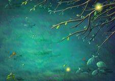 Vue supérieure de belle nuit dans la forêt de clairière Photo libre de droits