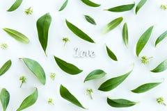 Vue supérieure de belles feuilles fraîches de vert et de symbole d'amour d'isolement sur le blanc Image stock
