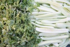 Vue supérieure de coriandre et de concombre de tranche Photo stock