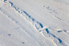 Vue supérieure de The Creek sur la plaine en hiver Image libre de droits
