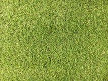Vue supérieure de fond artificiel de vert d'herbe Photographie stock