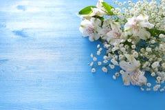 Vue supérieure de la belle disposition de fleurs blanche sur le fond en bois bleu Copiez l'espace Images libres de droits