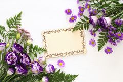 Vue supérieure de la belle disposition de fleurs pourpre et du conseil en bois au-dessus du fond blanc Copiez l'espace Image stock