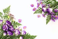 Vue supérieure de la belle disposition de fleurs pourpre sur le fond en bois blanc Copiez l'espace Images libres de droits