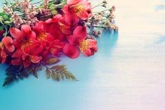 Vue supérieure de la belle disposition de fleurs rouge sur le fond en bois bleu Copiez l'espace Photo stock