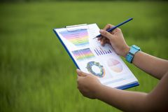 Vue supérieure de la jeune travailleuse active à l'aide de l'ordinateur portable et lisant le document de rapport annuel au trava image libre de droits