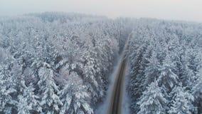 Vue supérieure de route rurale libre dans la forêt d'hiver banque de vidéos
