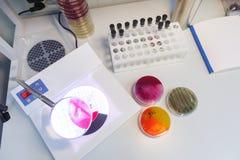Vue supérieure de table de laboratoire Images libres de droits