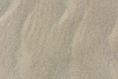 Vue supérieure de texture de sable avec des traces d'oiseau Photos libres de droits