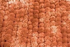 Vue supérieure de tiramisu avec la poudre de cacao là-dessus Fermez-vous de la surface de cacao et donnez une consistance rugueus photo stock