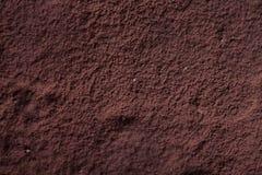 Vue supérieure de tiramisu avec la poudre de cacao images stock