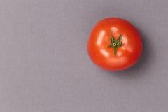 Vue supérieure de tomate juteuse rouge sur un fond gris Images stock