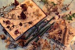 Vue supérieure de vieux livre de journal intime, de bougies vertes, de graines sèches et de fleurs sur la table photo libre de droits