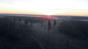 Vue supérieure de vol aérien : Paysage foncé de nature brumeuse fantasmagorique effrayante de matin - paysage brumeux clips vidéos