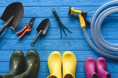 vue supérieure des bottes en caoutchouc et des outils de jardinage colorés sur le bleu Photos libres de droits