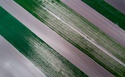 Vue supérieure des colis agricoles Photographie stock