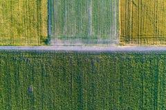 Vue supérieure des colis agricoles Image libre de droits