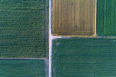 Vue supérieure des colis agricoles Image stock
