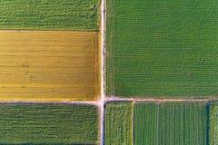 Vue supérieure des colis agricoles Photographie stock libre de droits