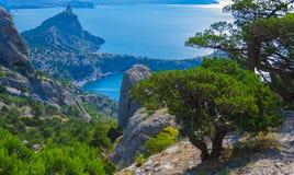 Vue supérieure des falaises, la mer Images libres de droits