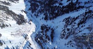 Vue supérieure des forêts et des montagnes neigeuses Un bon nombre de pins et de sapins Chemin marché dans les montagnes banque de vidéos