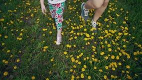 Vue supérieure des jambes de l'enfant et de la jeune femme marchant sur les pissenlits jaunes banque de vidéos