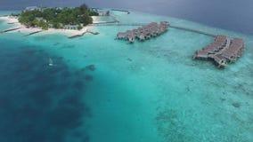 Vue supérieure des Maldives banque de vidéos