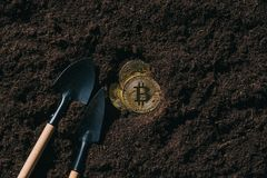 vue supérieure des outils de jardinage disposés et des bitcoins d'or Photo stock