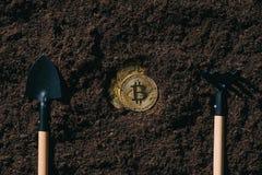 vue supérieure des outils de jardinage disposés et des bitcoins d'or Photographie stock