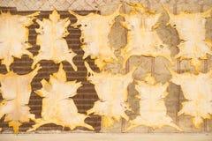 Vue supérieure des peaux séchant sur des couvertures au Maroc photo libre de droits