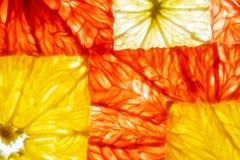 Vue supérieure des tranches carrées de transparent d'orange fraîche de chaux de citron de pamplemousse d'agrumes photographie stock libre de droits
