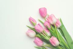 Vue supérieure du premier bouquet de ressort des tulipes roses sur le fond blanc avec l'espace de copie Photo libre de droits
