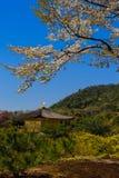 Vue supérieure du temple de Kinkakuji, Kyoto au Japon Image stock