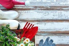Vue sup?rieure sur faire du jardinage une pelle remplie d'outil mis en pot de sol et de fleurs pendant le printemps d'?t? de jard photos libres de droits