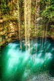 Vue supérieure d'Ik-Kil Cenote, près de Chichen Itza, le Mexique. Photographie stock