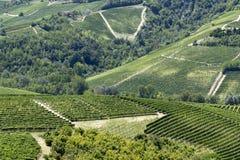 Vue sur des vignobles près de Serralunga, Italie Image libre de droits