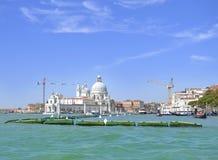 Vue sur l'église de salut Santa Maria Della à Venise Photographie stock