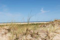 Vue sur l'herbe se levant dans le ciel bleu sur le borkum du nord d'île de mer image libre de droits