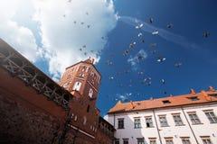 Vue sur la MIR de château dans la République Belarus à la journée images libres de droits