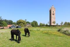 Vue sur la tour d'église du 13ème siècle dans Firdgum Photo libre de droits