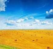 Vue sur le champ du blé moissonné avec beaucoup de balles photos stock