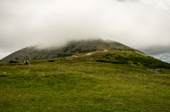 Vue sur le chemin à ka de ¼ de ÅšnieÅ, montagnes géantes, Pologne Images libres de droits