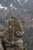 Vue sur le chemin au sommet de la montagne de Tegelberg Photo libre de droits