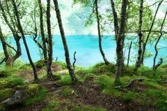 Vue sur le fjord de l'eau bleue Photographie stock libre de droits